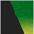 Chitrabarnali 2020 Logo