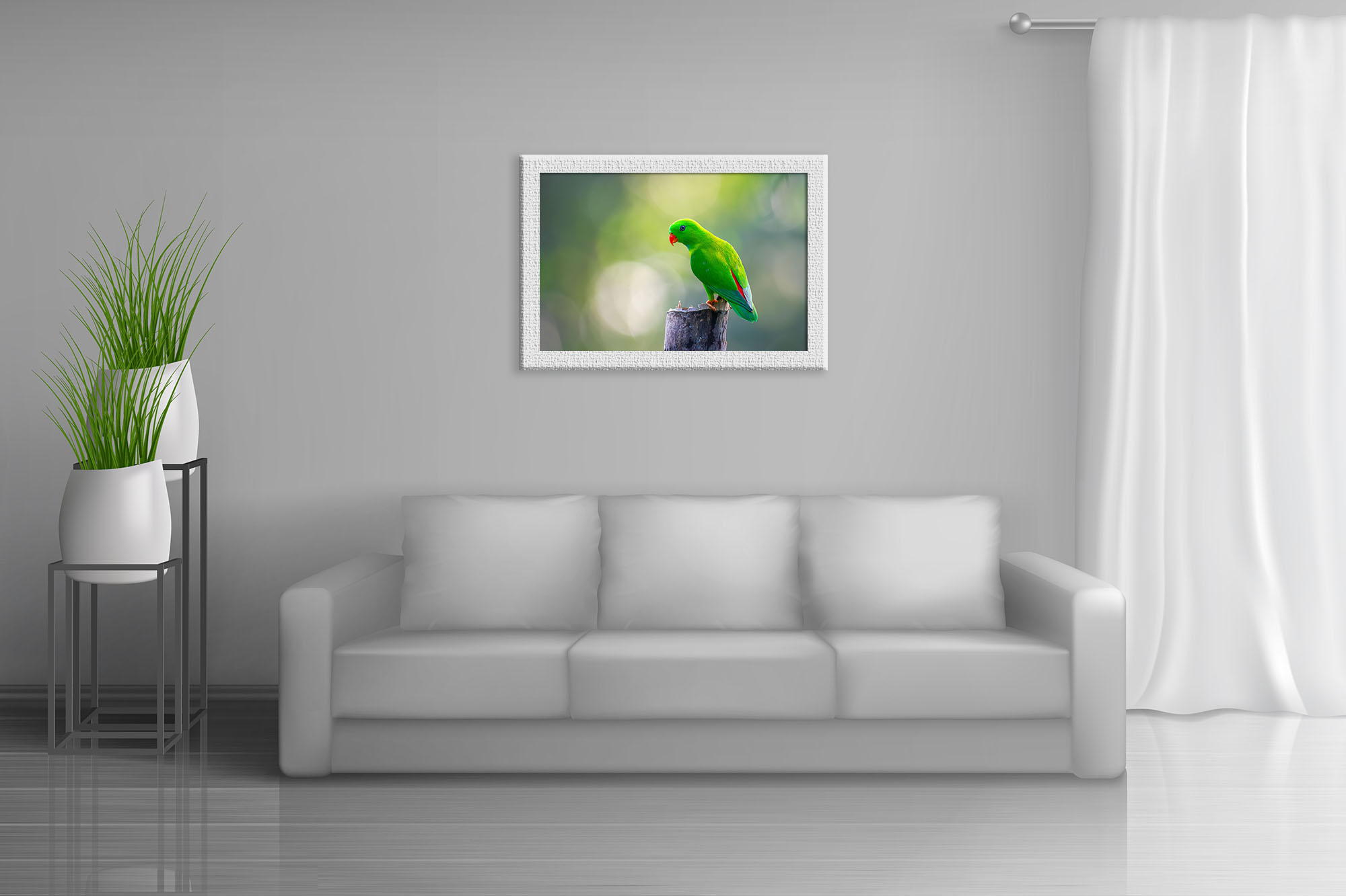 Vernal hanging parrot by Suvradeep Mitra